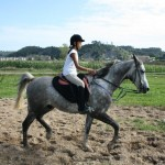 rutas a caballo asturias