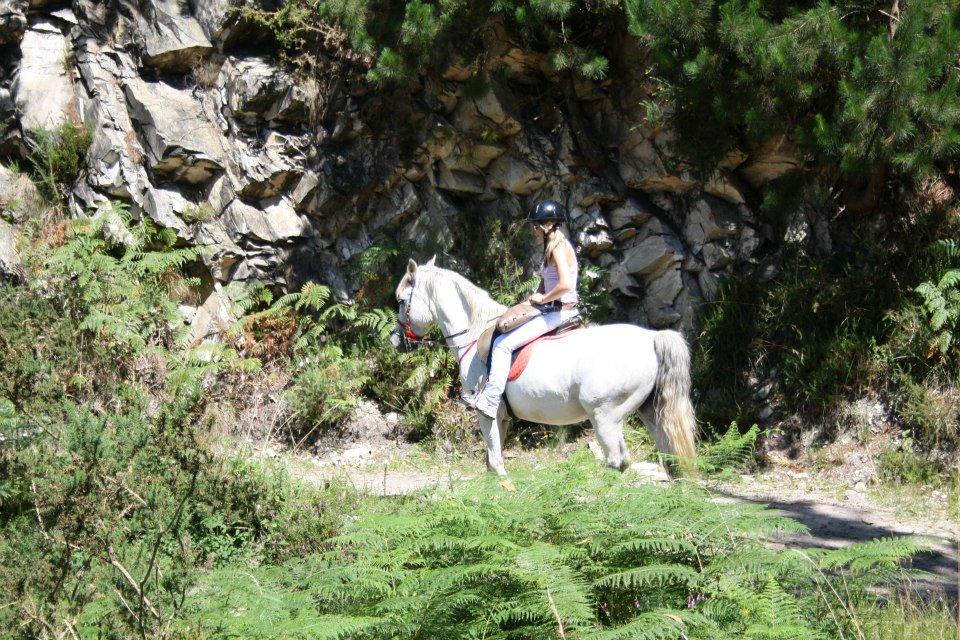 rutas a caballo en picos de europa